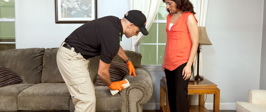 Corona, CA carpet upholstery cleaning