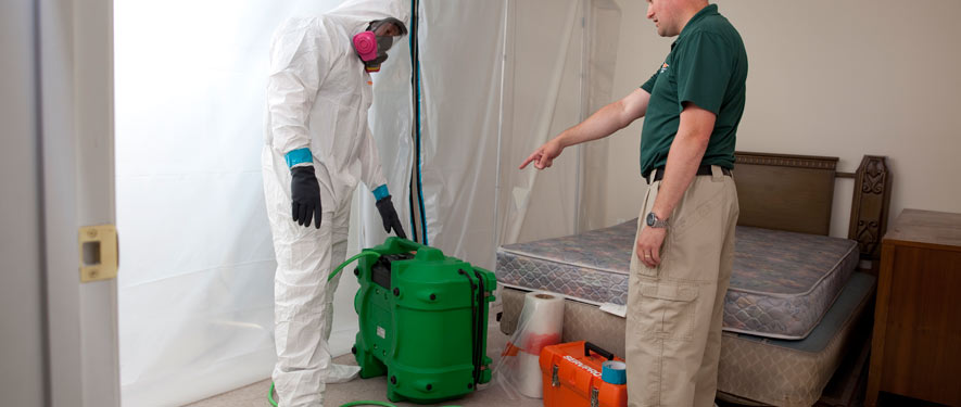 Corona, CA mold removal process